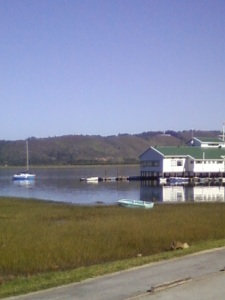 Knysna Yacht Club and Glassy Water
