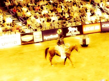 bull riding_edited